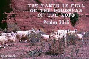 Psalm33_5